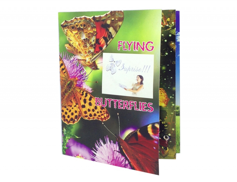 21551403 FLYING BUTTERFLY PROMOPACK-6 BUTTERFLIES-FREE DELIVERY!