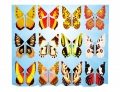 215514 FLYING BUTTERFLY 1 UNIT - Image 1