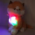 4142-38660 Светещa Беж котка и пее 1 БГ песен, 38cm
